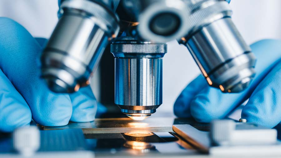 Lab technician looking at a sample under a microscope